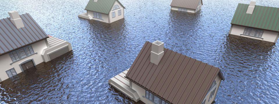 Water Mitigation